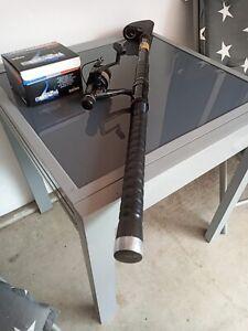Schöne Angelruten DAIWA REGAL, 5,30 m, 10-20 g (neu), mit Rolle DAIWA EG 1650