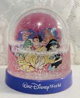 Vintage Disney World Princess Do It Yourself Snow Globes Picture Holder RARE