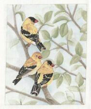 Vignette de Tissu 12x15 cm Chardonneret jaune Cotton Fabric American Goldfinch