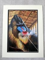 Walton Ford Print Contemporary American Art Pipe Smoking Monkey Mandrill Ape