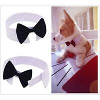 1 × Adjustable Puppy Kitten Dog Cat Pet Cotton Bow Tie With Bell Necktie Collar