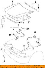 TOYOTA OEM Hood-Insulation Pad Liner Heat Shield 5334133010