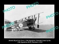 OLD POSTCARD SIZE PHOTO BRITISH AIR FORCE WWI SOPWITH CAMEL BIPLANE c1918