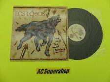 """Los Lobos how will the wolf survive - LP Record Vinyl Album 12"""""""