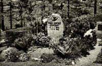 HAHNENKLEE Oberharz ~1950/60 Friedhof Paul-Lincke-Grab alte AK ungelaufen