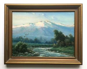 F. Vial - Chilean Mountain Landscape - circa 1920s - Excellent Quality