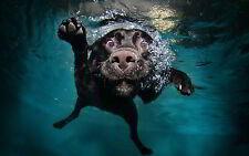 Funny Submarina Perro-Calidad Mouse Mat / Pad