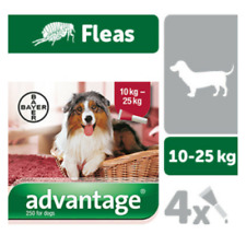 Bayer Advantage antiparasitaire Flea Chiens Dogs x 4 pipettes 250 - 10 Á 25kg