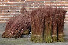Naturweide FLECHTWEIDE von WEIDENPROFI, 160-180 cm Flechtruten Weide DIY Natur