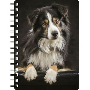 BORDER COLLIE TRI COLOUR 3D NOTEBOOK,  (item no 5) ideal gift