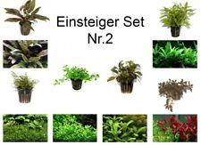 débutant Set mit 6 Simple TROPICA Pot de plantes aquariumpflanzenset N°2