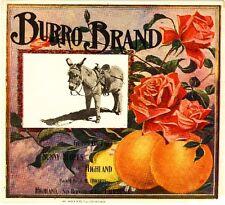 Highland Burro Donkey Pink Rose Flowers Orange Citrus Fruit Crate Label Print