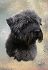 Glen of Imaal Terrier Dog A6 Blank Card Design By Starprint