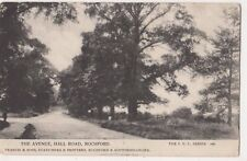 The Avenue Hall Road Rochford, Essex 1905 Postcard, B685