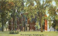 Galesburg Illinois~Big Shrub Before Knox College~1910 Postcard