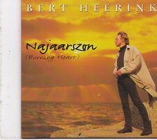 Bert Heerink-Najaarszon cd single
