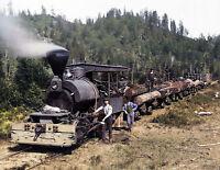 "1900 Loaded Logging Train, California Vintage/ Old Photo 8.5"" x 11"" Reprint"