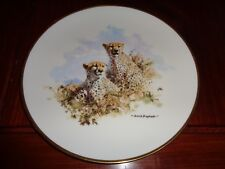 Wedgwood Spink Large Collectors Plate THE CHEETAH Ltd To 25,000 Worldwide