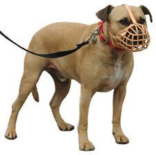Articles marrons en plastique pour chien