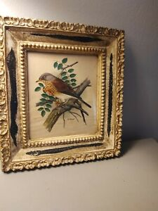 "Vintage Framed Bird Print Signed-  PH Gonner- 9.5"" X 10.5"" - USA"