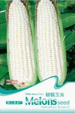 Original Package 10 Corn Seeds White Waxy Corn Zea Mays Vegetable Seed B024