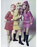 """The Paris Sisters 10"""" x 8"""" Photograph no 3"""
