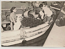 Vintage Photo Of A Couple On A boat Packaging Some Sort Of Sea life