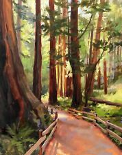 Plein Air Muir Woods Redwood Trees Landscape 20x16in Original Oil Painting a Day