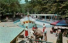 Children's Zoo, Highland Park, Pittsburgh, PA Postcard