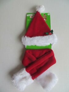 Christmas Ms. Claus accessory set hat and scarf for cats one size fits most