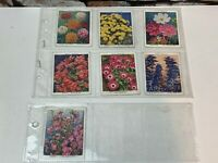 """WD & HO Wills Cigarette Cards """"Garden Flowers New Varieties"""" Large Card Set of 7"""