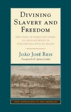 Divining Slavery and Freedom: The Story of Domingos Sodré, an African Priest in