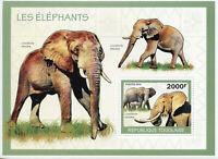 Togo Elephants Stamps 2010 MNH African Elephant Wild Animals Fauna 1v S/S