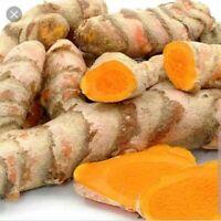 Fresh Turmeric Roots - 5 oz for Cooking & Tea (Curcuma Longga)