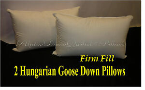 2 NEW HUNGARIAN GOOSE DOWN FIRM PILLOWS  KING  FILL POWER 100% COTTON COVER