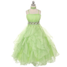 Lime Green Girl Dresses Pageant Princess Wedding Birthday Party Ball Gown Prom