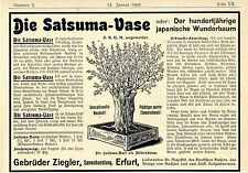 The Satsuma Vase (the 100 Annual. Japanese Miracle Tree) DRGM-Patent Advertisement 1905