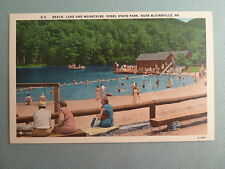 Beach Lake Mountains Vogel State Park BLAIRSVILLE GEORGIA GA Linen Postcard