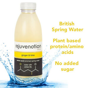 Rejuvenation Water - Plant based Protein Water - Ginger & Lime 12 x 500ml