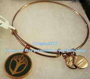 Alex and Ani Color Infusion Unexpected Miracles Shiny Rose Gold - Discontinued