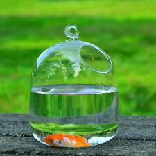 Aquarium Transparent Glass Hanging Vases Fishbowl Fish Tanks Charm Home Decor