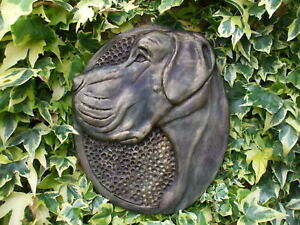 LARGE  STONE BRONZED GREAT DANE DOG DOGS HEAD WALL PLAQUE  .