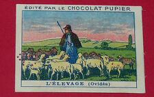 CHROMO PUPIER 1930 ALBUM JOLIES IMAGES SERIE 4 TRAVAUX CAMPAGNE ELEVAGE OVIDES