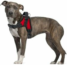 Tropical Petland No Pull Dog Vest Harness Dog Body Padded Vest Comfort Control