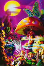 2 POSTERS : MARIJUANA THEME:PSYCHEDELIC:  MAGIC VALLEY - FREE SHIP! #3397 LP35 W