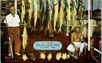Deep Sea Fishing Catch Biloxi Ms. 1950's Large catch Vintage Postcard AA-002