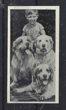 1936 UK Dog & Friend Child Photo Ritson Carreras Cigarette Card CLUMBER SPANIEL