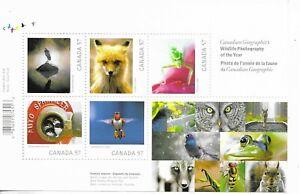 CANADA Birds/Wildlife Mini Sheet  MINT NH