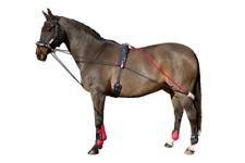John Whitaker Training System Lunging Equipment - Blue