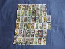 Flowers/Garden UK Issue Collectable Tea Cards